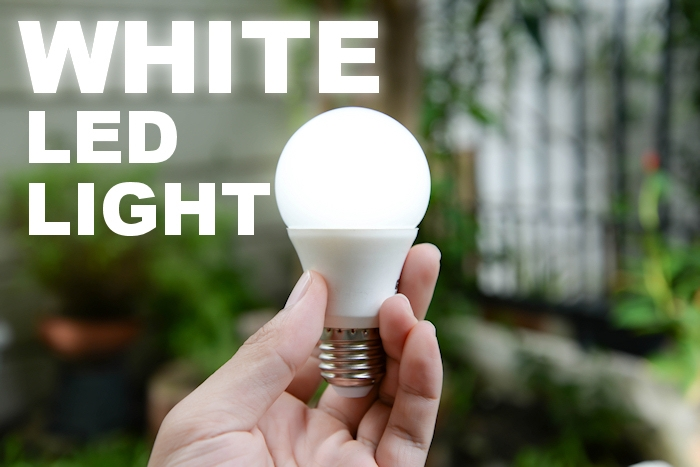 Importance of LED Lights
